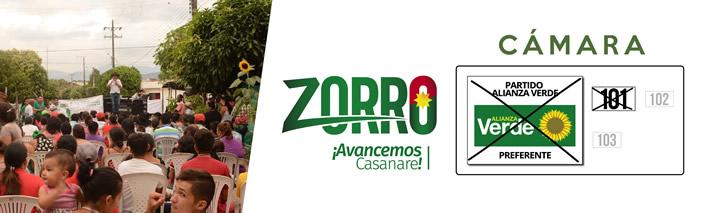 banner banner zorro