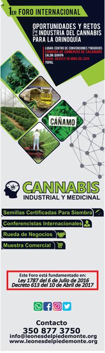 banner banner foro internacional