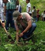 Gobernación de Casanare conmemoró día nacional del árbol con siembra de especies nativas