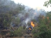 Corporinoquia asisti� a taller sobre cultura contra incendios forestales