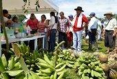Se celebr� el D�a del Campesino en Paz de Ariporo