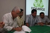 Hoy dicta conferencia Gerente de Fedearroz en Foro Agropecuario