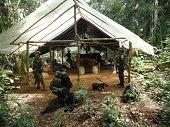 Complejo cocainero del Frente 16 de las FARC fue destruido en Vichada