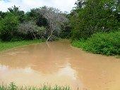 Comunidades de zona rural de Yopal advierten sobre proyecto petrolero que afectaría por lo menos 12 corrientes de agua
