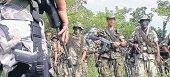 Cinco bandas se pelean el tr�fico de droga por los Llanos