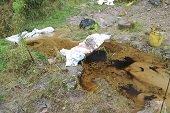 Derrame de hidrocarburos en el corregimiento del Algarrobo