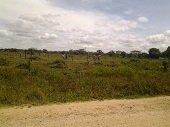 Invadieron pista de aterrizaje de Monta�as del Totumo en Paz de Ariporo