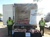 Autoridades incautaron 2.394 kilogramos de carne de chig�iro