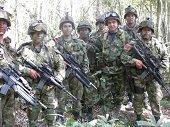 148 guerrilleros y 147 delincuentes quedaron fuera de circulación en 2014 según balance de la Octava División del Ejército