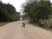 Inici� pavimentaci�n en el tramo Pozo Petrolero - Trinidad