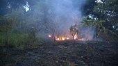 En Villanueva incendio forestal amenaz� con consumir una vivienda y gener� momentos de angustia en el Jard�n del Abuelo
