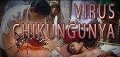 50 casos confirmados del virus Chikungunya en Villanueva