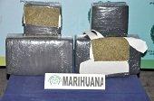 Cargamento de marihuana fue incautado en Paz de Ariporo