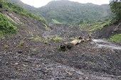 Deslizamientos en Labranzagrande no representan riesgo para Yopal