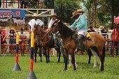 Exitoso balance en Feria Ganadera en Man�