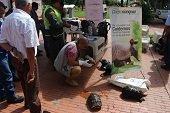 19 animales fueron entregados voluntariamente en Jornada Nacional de Entrega de Fauna Silvestre