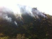 IGAC advirtió que los efectos de los incendios forestales serán catastróficos para los suelos colombianos
