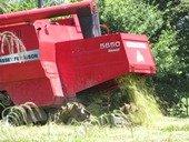 Arroceros pidieron al Gobierno paln para chatarrizar y  renovar maquinaria agricola
