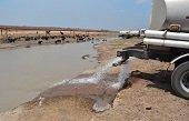 Gobernación asegura que distribución de 930.000 galones de agua mantienen con vida a los chigüiros en Paz de Ariporo
