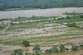 Fuerza A�rea evacu� diecis�is personas en creciente del rio Ariari
