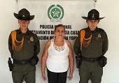 Carabineros de la Polic�a recuperaron semovientes equinos listos para ser comercializados en Bogot�