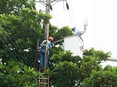 El jueves suspensi�n del servicio de energ�a en sectores rurales de Yopal y Aguazul