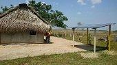 En 15 veredas de Hato Corozal se instalan 206 sistemas fotovoltaicos