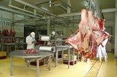 Veedur�as acuden a Derecho de Petici�n para indagar por planta de beneficio animal de Yopal