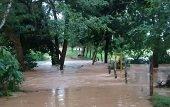 No fueron suficientes ayudas humanitarias para damnificados en Morichal