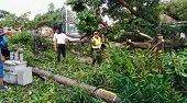 Vendaval dejó sin energía eléctrica a Puerto Carreño