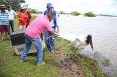 Fauna silvestre recuperó su libertad en Hato Venecia en San Luís de Palenque
