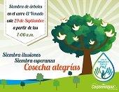 Corporinoquia siembra árboles este jueves celebrando implementación del acuerdo de paz