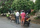 Resultados operativos de la Polic�a el fin de semana en Casanare