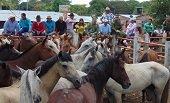 Comunidades de Caño Chiquito donaron 42 caballos al Ejército