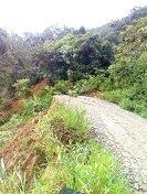 Derrumbe mantiene incomunicadas 5 veredas de Aguazul