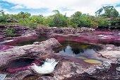 Este año 16.300 turistas visitaron Caño Cristales y La Macarena