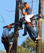 Interrupciones en el servicio de energía eléctrica en el circuito Morichal – Tilodirán – Quebradaseca