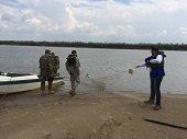 Mallas para pesca ilegal en río Meta siguen amenazando a las toninas