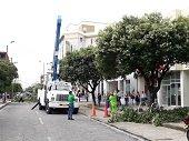 Ceiba se integra a campaña Todos por un Yopal más Seguro
