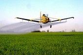 Fumigaciones aéreas en arroceras estarían afectando a comunidad de Paz de Ariporo