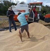 Arroceros a paro agropecuario nacional del 12 de octubre