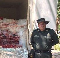 Policía incautó 4 toneladas de carne de chigüiro