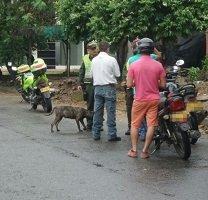 Policía capturó en Casanare a 6 personas en las últimas horas