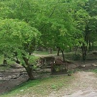 Jornada de limpieza y ornato el sábado en el parque La Iguana