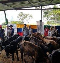 Entrega de proyectos productivos en Recetor benefició a 85 familias sobrevivientes del conflicto armado