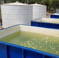 A pesar de desacuerdos con el Alcalde EAAAY colocó en funcionamiento sistema alterno de agua potable para Yopal