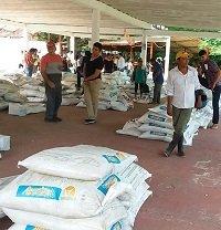 Insumos para bancos de proteínas a ganaderos de Yopal entregó Alcaldía