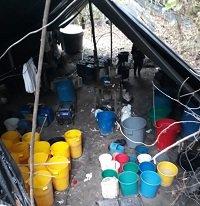 Destruido laboratorio para el procesamiento de cocaína en Campohermoso