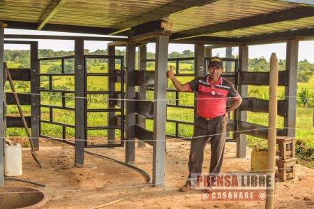 Proyecto de ganadería sostenible de Cormacarena impactó 4 municipios del Meta - Noticias de Colombia